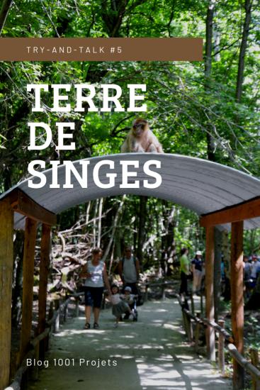 TERRE DE SINGES.png