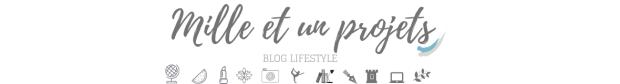1001 projets blog
