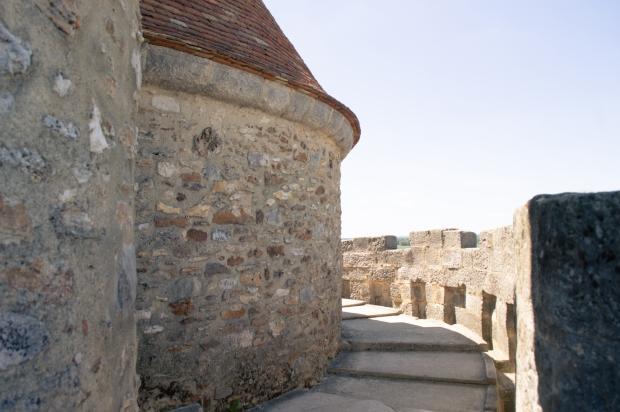 chateau_blandy_les_tours-13