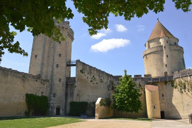 chateau_blandy_les_tours-8